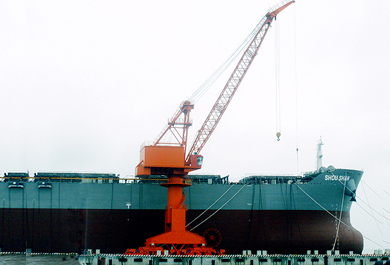General Application Portal Crane